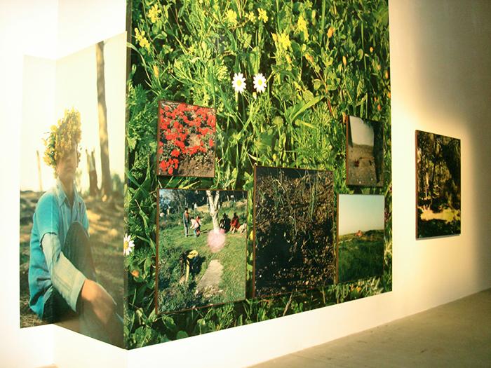 Yto Barrada / Yto Barrada - Iris Tingitana / Biennale de Venise - Pavillon de l'Arsenal / 2007