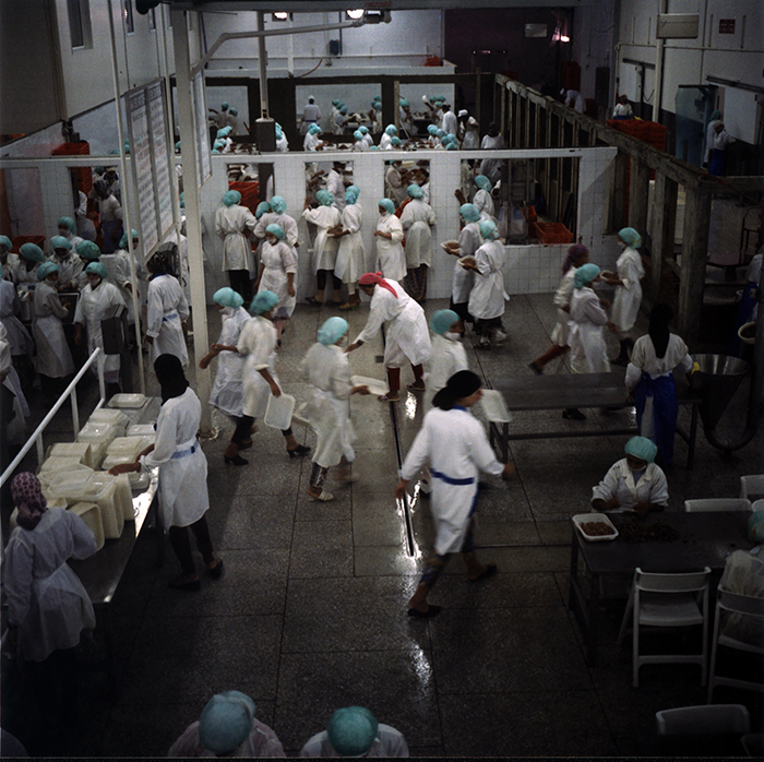 Yto Barrada / Yto Barrada - Usine 5/ factory 5 -Conditionnement de crevettes dans la zone franche/ prawn processing plant in the Free trade Zone- Tanger 1998/ Tangier 1998 / Le détroit- the Strait Project series / 103 x 103 cm - Edition of 5 - Only one size / 1998