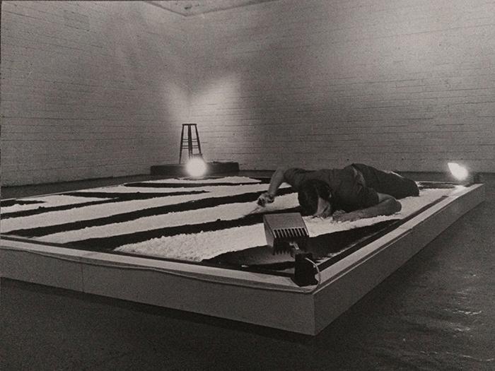 Nigel Rolfe / Performance / 1978 / Zebra Project / Gallery Dublin / Archive