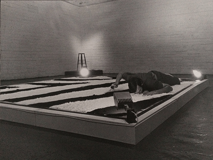 Nigel Rolfe / Performance / 1978 / Zebra Project / Gallery Dublin / Archive