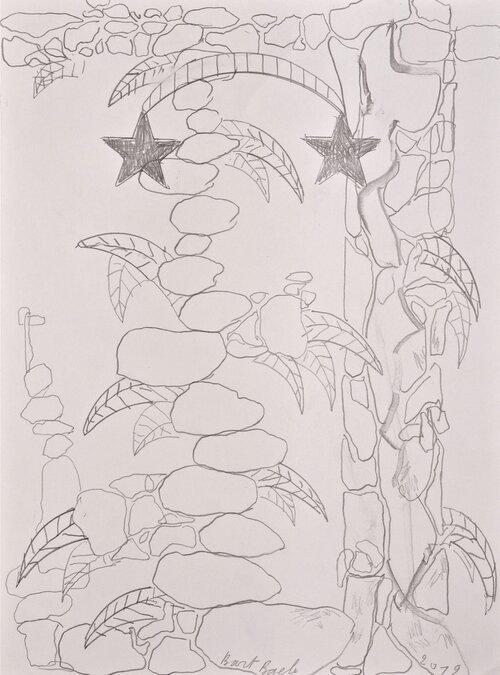 Bart Baele / Stones, 2 stars, plants / Crayon sur papier - Pencil on paper / 35,5 x 26,5 cm / 2019